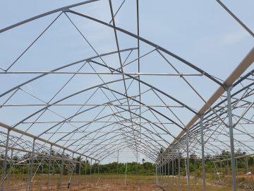 Kinh nghiệm thi công nhà lưới trồng rau công nghệ cao