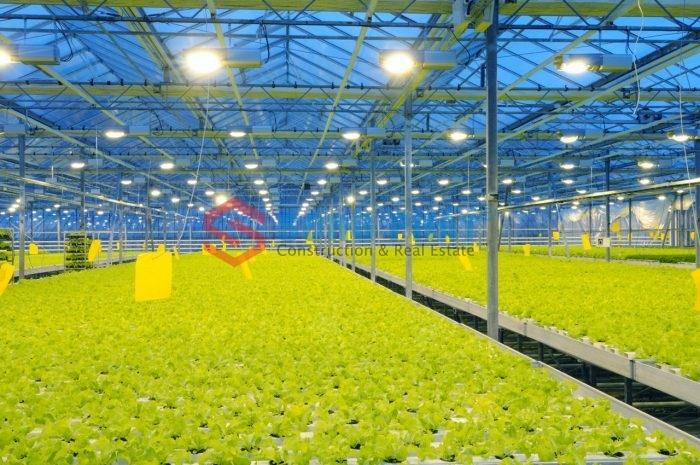 Xu hướng làm nhà màng nông nghiệp trong năm 2020