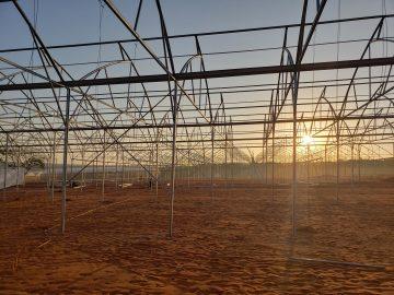Tìm hiểu về đơn giá thi công các mô hình nhà kính nông nghiệp hiện nay
