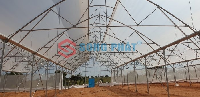 Tư vấn lựa chọn màng nhà kính nông nghiệp phù hợp nhất
