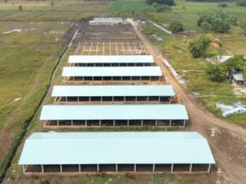 Dự trù chi phí xây dựng chuồng trại chăn nuôi