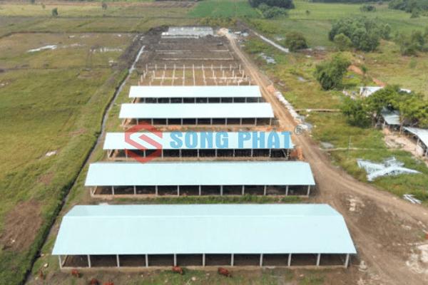 chi phí xây dựng chuồng trại chăn nuôi